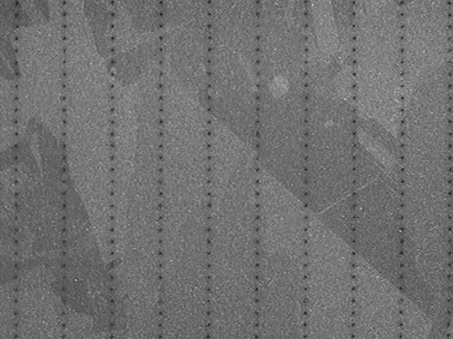 060602-macro-.75X